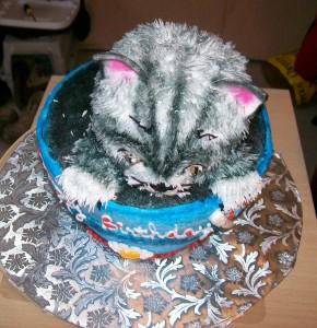 cat_in_bucket_2