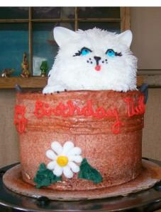 kitten in a bucket 2 2011